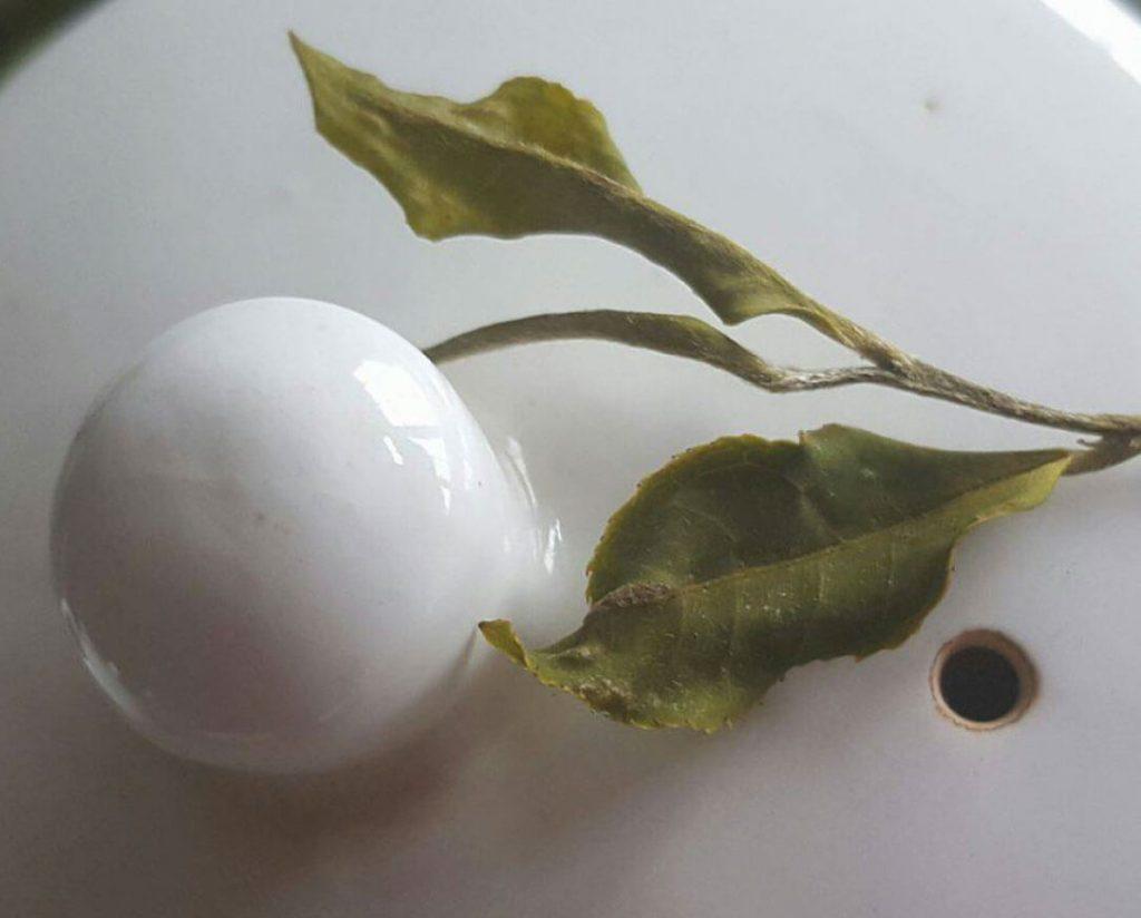 ダージリン茶葉の写真