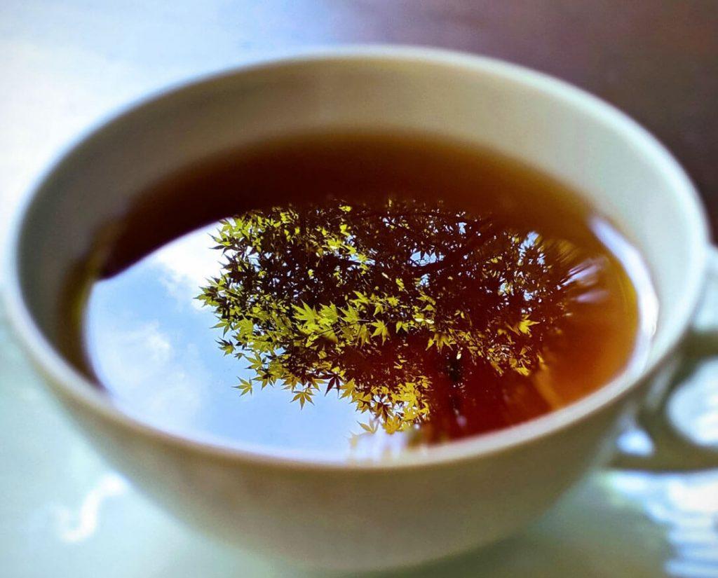 ティーカップに紅葉が写り込んでいる写真